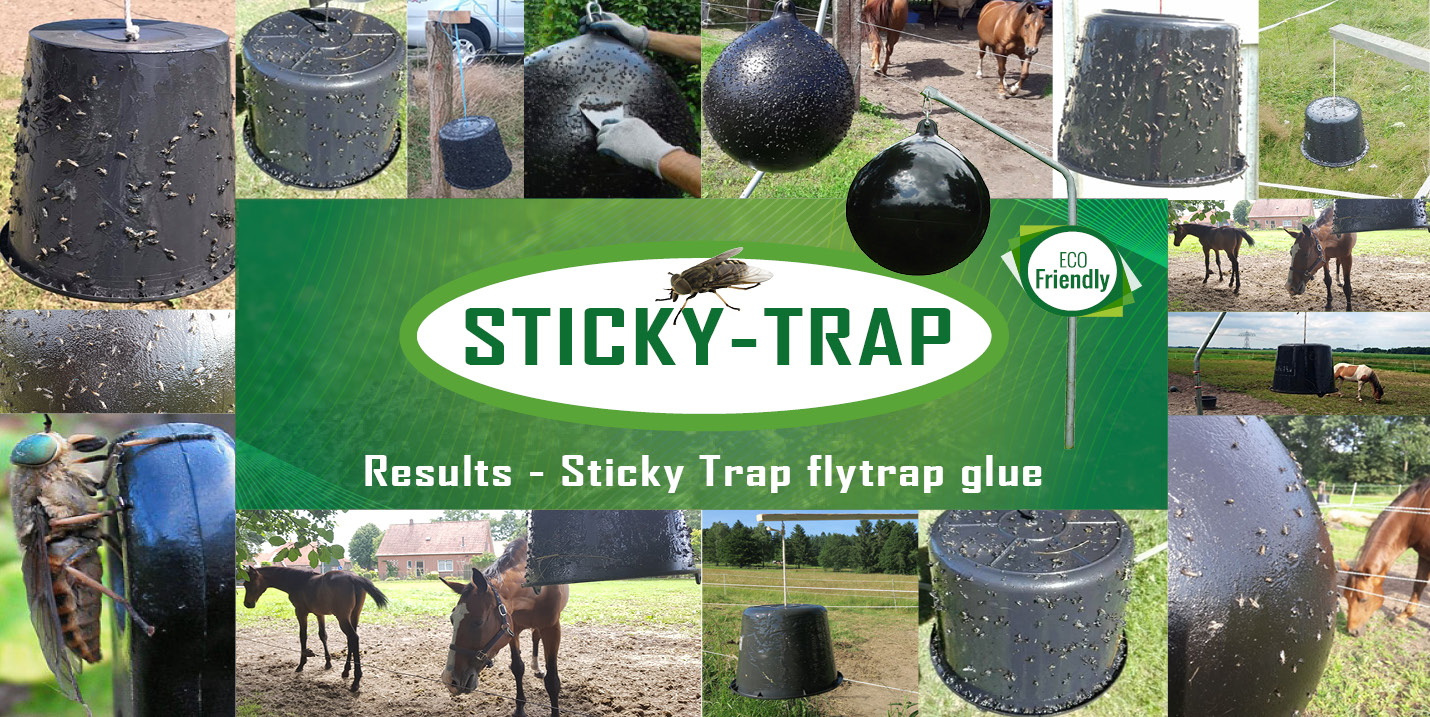 Results Sticky Trap flytrap glue