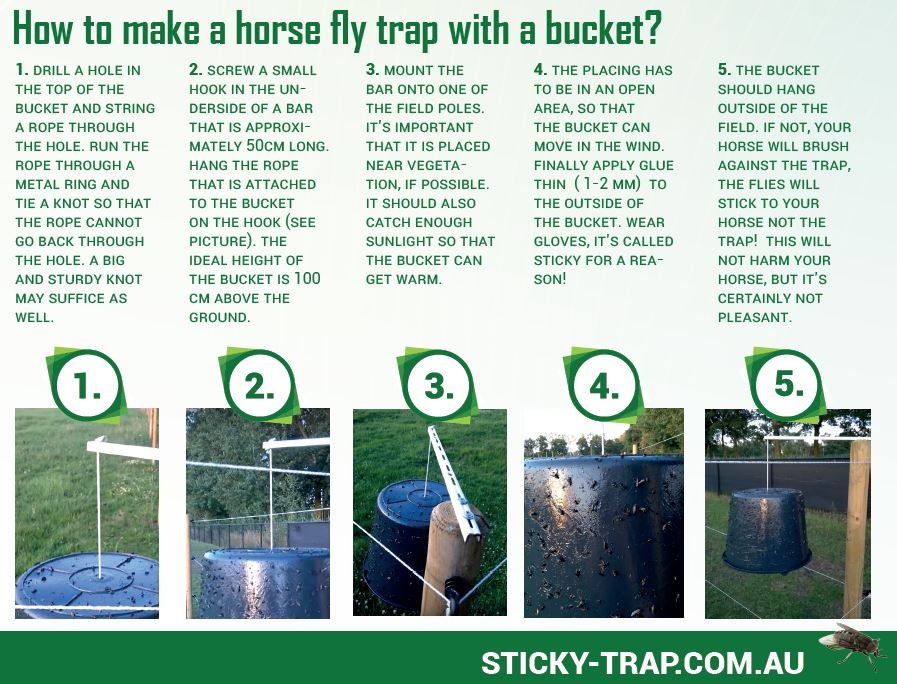 How to make a flytrap with a black bucket